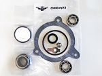 365Bb Water Pump Kit-365bbwpkit